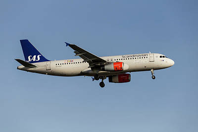 Vintage College Subway Signs Color - Scandinavian Airlines Airbus A320            2 by David Pyatt