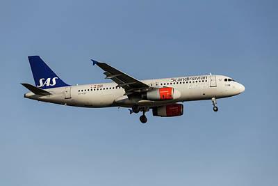 Animal Portraits - Scandinavian Airlines Airbus A320            2 by David Pyatt