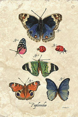 Royalty-Free and Rights-Managed Images - Scientific Butterflies 2 by Debbie DeWitt