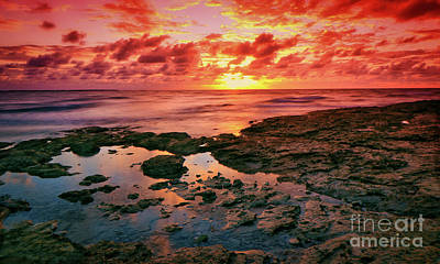 Photograph - Sea Fire by Montez Kerr