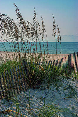 From The Kitchen - Sea Oats at Gulf State Park by James C Richardson