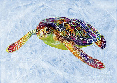 Colored Pencils - Sea Turtle 3 on Blue by Hailey E Herrera