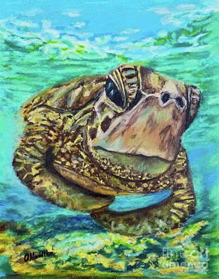 Pastel - Sea Turtle Oil Pastels by Olga Hamilton