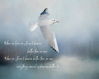 Animals Digital Art - Seagull With Paolo Coehlo Quote by Teresa Wilson