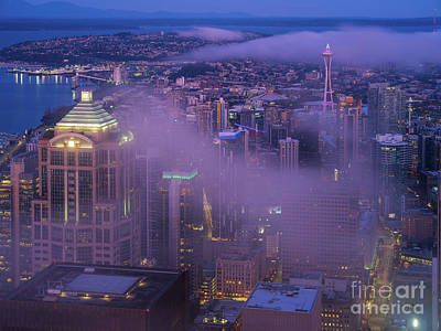 Nautical Animals - Seattle Downtown Morning Fog by Mike Reid