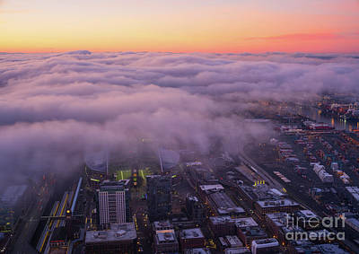 Nautical Animals - Seattle Sodo Fog Layer at Dawn by Mike Reid