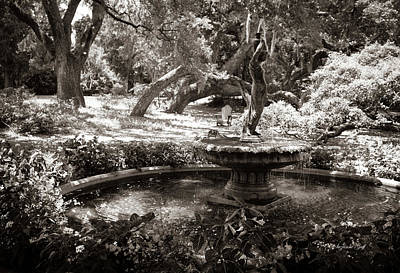 Mellow Yellow - Secret Fountain in Sepia by Suzanne Gaff