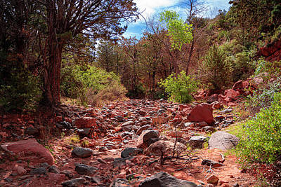 Landscapes Royalty-Free and Rights-Managed Images - Sedona Dry Creek Bed by Jeremy Rickman