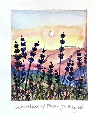 From The Kitchen - Seed Heads on Topanga by Luisa Millicent