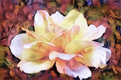 Still Life Royalty-Free and Rights-Managed Images - September Rose by Susan Maxwell Schmidt