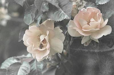 Impressionist Landscapes - Shabby Chic Collection - Rose Maigold by Jenny Rainbow