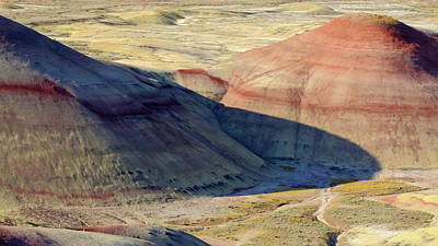 Winter Animals - Shadows in the Painted Hills by Kevin Felts