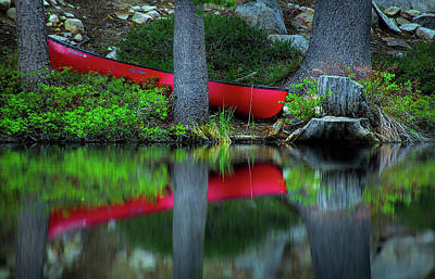 Abstract Animalia - Shallow Pond Deep Reflection by Steve Baranek