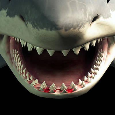Animals Digital Art Royalty Free Images - Shark Teeth Royalty-Free Image by Daniel Eskridge