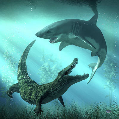Royalty-Free and Rights-Managed Images - Shark vs Crocodile by Daniel Eskridge