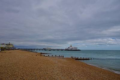 Winter Animals - Shingle beach and pier, Eastbourne, east Sussex, England. by Joe Vella