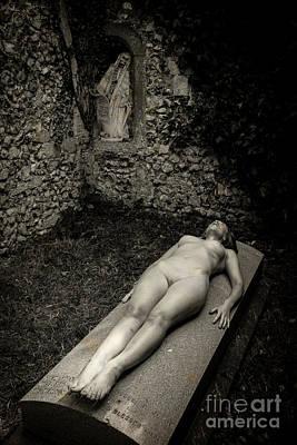 Photograph - Silent Widow by Simon Pocklington