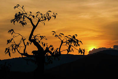 Cartoons Tees - Silhouette At Sunset by Rob Hemphill