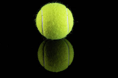 Still Life Royalty-Free and Rights-Managed Images - Single Tennis Ball by Jennifer Wick