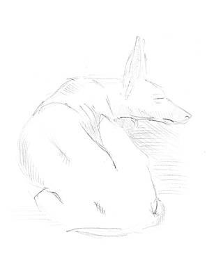 Drawings Royalty Free Images - Sketch Sleeping Dog Royalty-Free Image by Masha Batkova