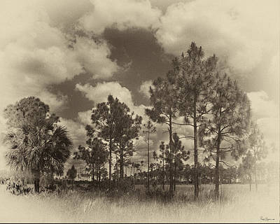 Achieving - Slach Pines Big Cypress by Rudy Umans