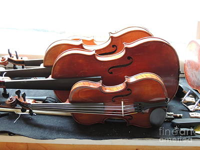 Water Droplets Sharon Johnstone - Small to large Violines Germany Stugart by Diane Greco-Lesser