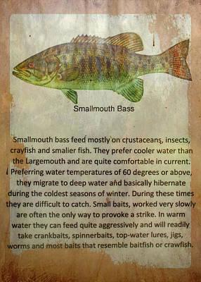 Bringing The Outdoors In - Smallmouth Bass by David Beard