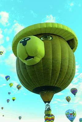 Royalty-Free and Rights-Managed Images - Smokey the Bear hot air balloon by Jeff Swan