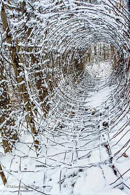 Photograph - Snow covered fence vortex II by LeeAnn McLaneGoetz McLaneGoetzStudioLLCcom