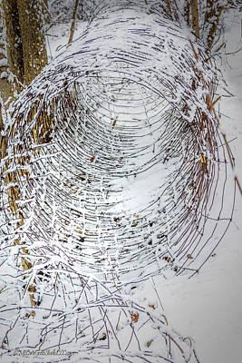 Photograph - Snow covered fence vortex by LeeAnn McLaneGoetz McLaneGoetzStudioLLCcom