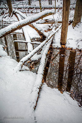 Photograph - Snow covered logs by LeeAnn McLaneGoetz McLaneGoetzStudioLLCcom