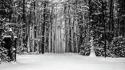 Photograph - Snow Storm by Louis Dallara