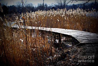 Frank J Casella Royalty-Free and Rights-Managed Images - Snow Under the Wetlands Bridge by Frank J Casella