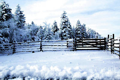 Vintage Chevrolet - Snowy Fence Line by Roland Stanke