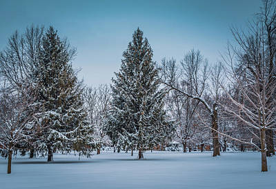 Photograph - Snowy Landscape by Mike Cox