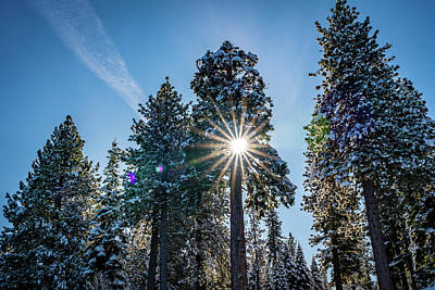 Everett Collection - Snowy Sunburst by Clinton Ward