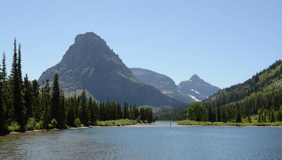 Amy Hamilton Animal Collage - Solitude at Pray Lake by Whispering Peaks Photography