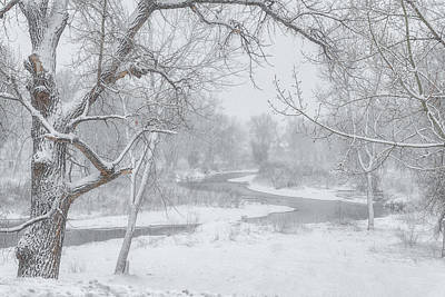 Royalty-Free and Rights-Managed Images - South Platte Snow by Darren White