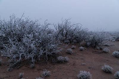 Sara Habecker Folk Print - Southwest New Mexico desert winter fog. by Mike Helfrich