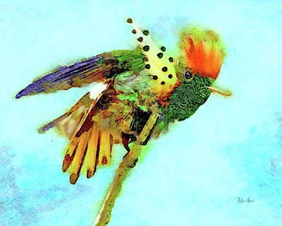 Painting - Splendid Coquette Hummingbird  by Russ Harris