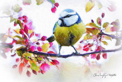 Priska Wettstein Pink Hues - Spring Blossoms with Bird by Chris Armytage