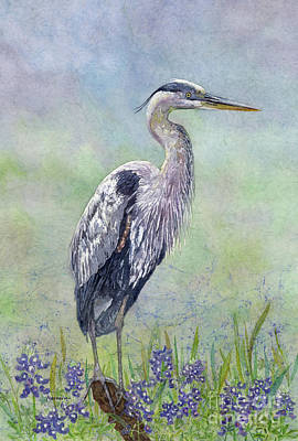 Royalty-Free and Rights-Managed Images - Spring Heron by Hailey E Herrera