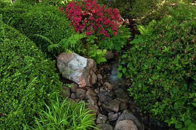 Keith Richards - Spring Japanese Garden in Prague 9 by Jenny Rainbow