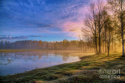 Royalty-Free and Rights-Managed Images - Spring morning light 3 by Veikko Suikkanen