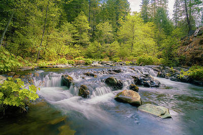 Sean - Spring on Squaw Valley Creek by Mike Lee