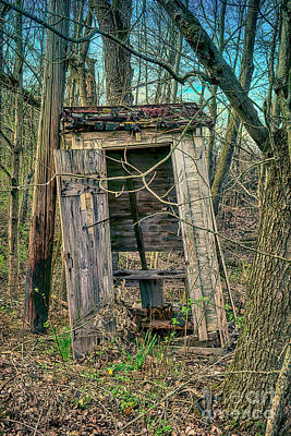 When Life Gives You Lemons - Spring Outhouse In The Woods by Janice Pariza