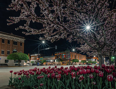 Photograph - Spring time Cityscape by Mike Cox