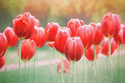 Colorful People Abstract - Spring Tulips Painterly Reds  by Carol Japp