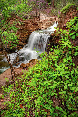 Purely Purple - Spring Waters of Tanyard Creek Falls - Bella Vista Arkansas by Gregory Ballos
