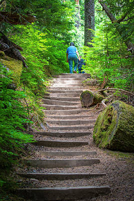 Photograph - St. Helens Stairs by Doug LaRue